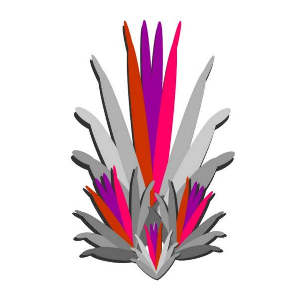 Botanical Archetype_Tillandsia