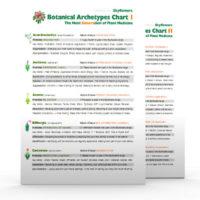 Botanical-Archetypes-Chart-Set2