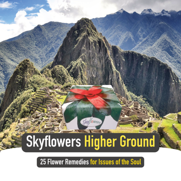 Quick Ad_Higher Ground_Square