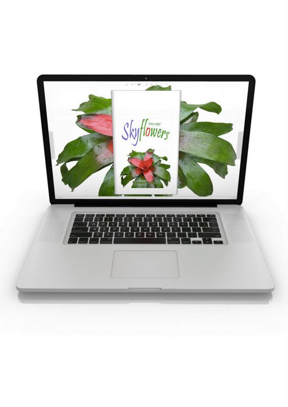 Skyflowers-Guide-for-Mac