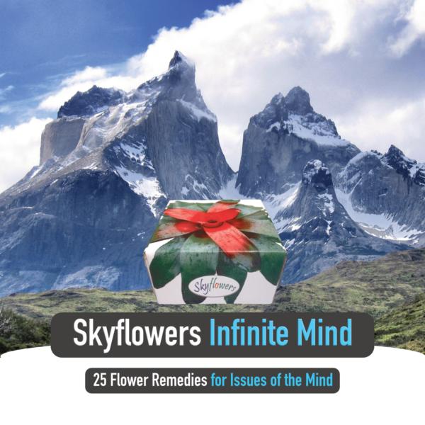 Quick Ad_Infinite Mind_Square