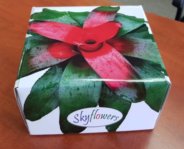 Box of Skyflowers