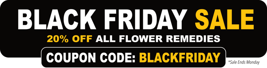 Blog skyflowers since 1997 black friday cyber monday sale fandeluxe Images