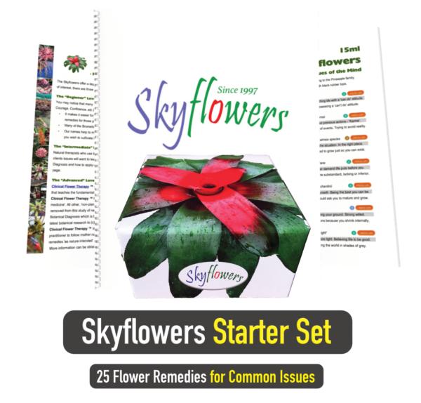 Skyflowers Starter Set_Square