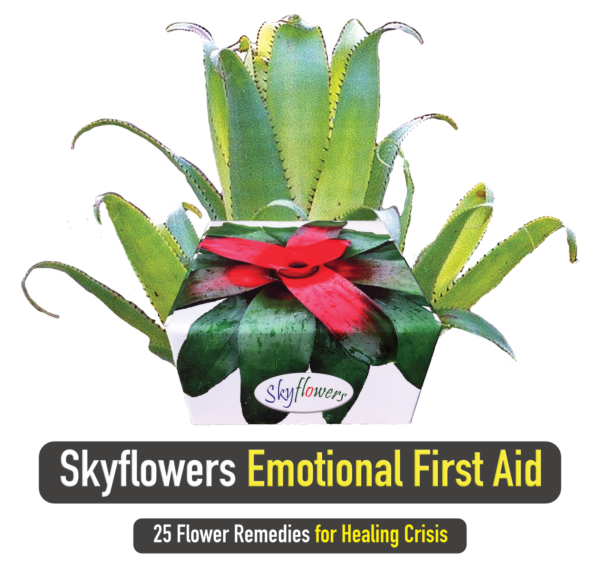 Box Set_Emotional First Aid